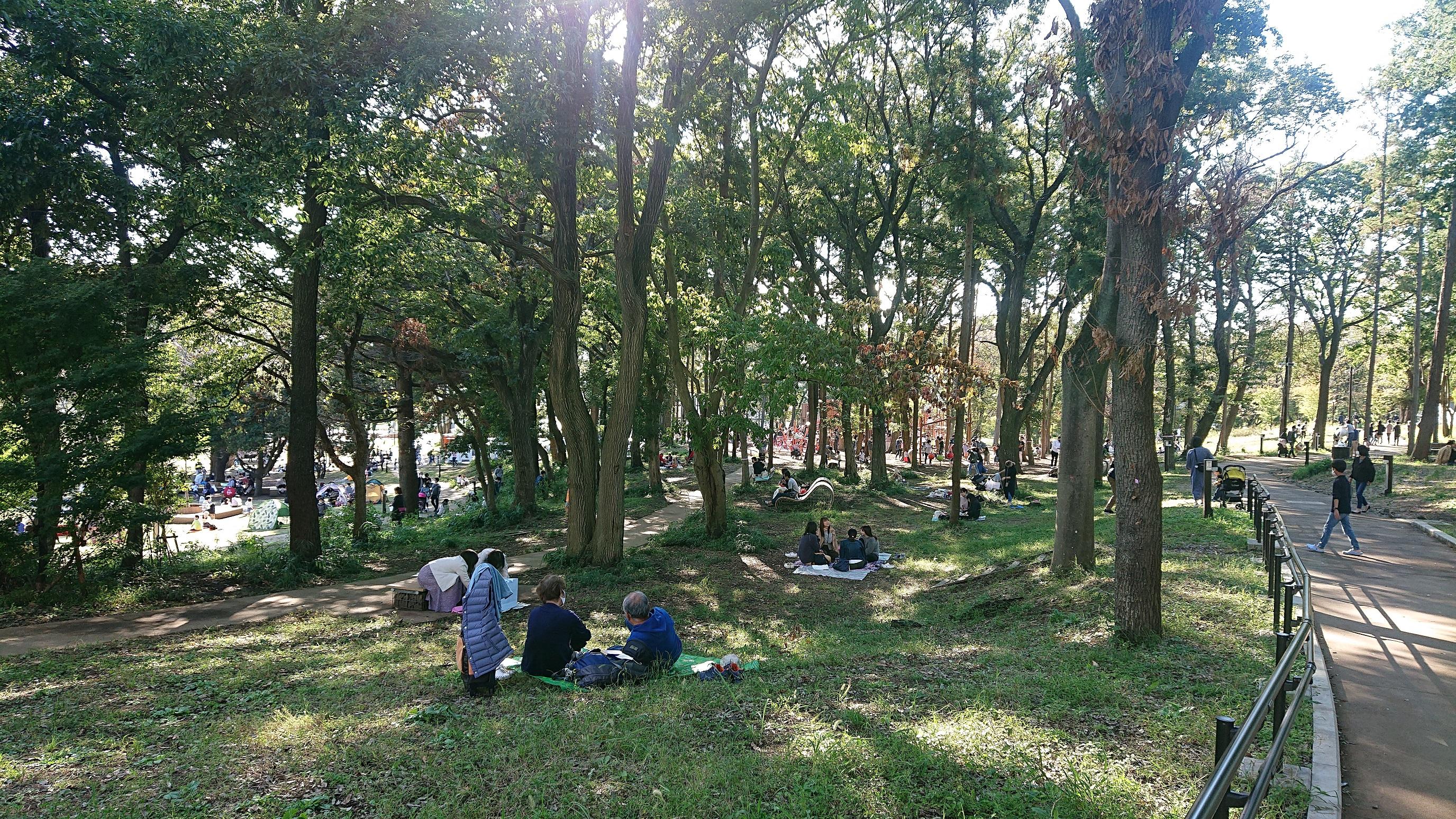 多様な活動が営まれる鶴間公園